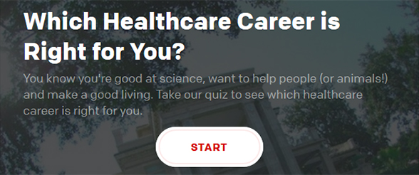 Explore career options in healthcare