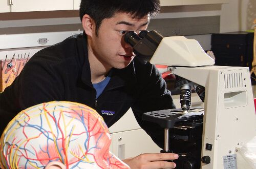 Male student using microscope at University of St. Thomas - Houston