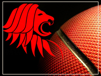 Graphic: Celt Lion Basketball