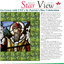 Graphic: Star View 15 Issue 5