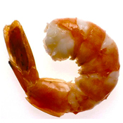 Photo: Shrimp
